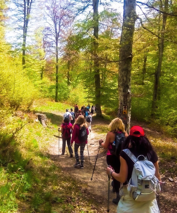 Hiking Go Active Metsovo